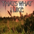 Unknown artist - That's What I Like - Tribute to Bruno Mars