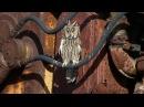 Сова ушастая (Asio otus) на острове Змеиный