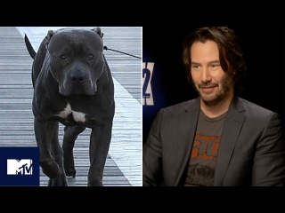 John Wick: Chapter 2| Keanu Reeves Reveals Dog's Name! | MTV