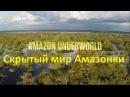 Скрытый мир Амазонки HD