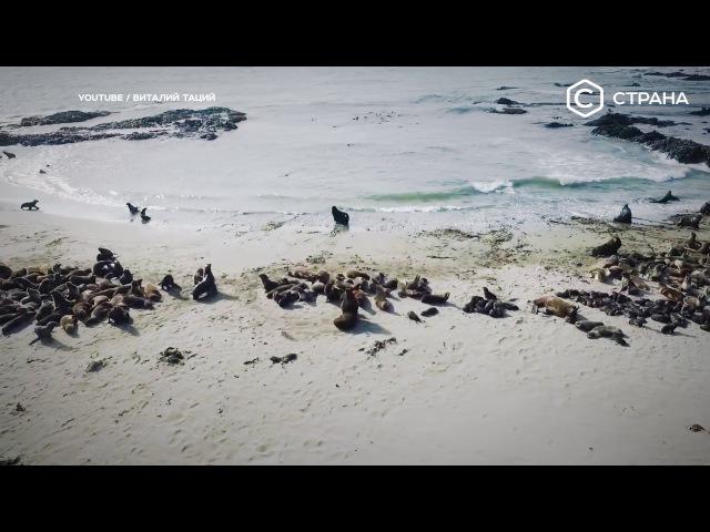 Берингово море Спецпроект Телеканал Страна