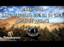 Binary fox как заработать 65 за 24 часа Мониторинг хайпов 2017