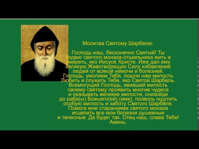 Это видео поможет многим! Алексей Тришма и святой Шарбель дарят Вам сеанс исцеления!