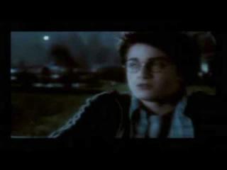 Harry Ginny Draco - Like A Boy