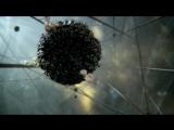 BBC внутренняя Вселенная: тайная жизнь клетки