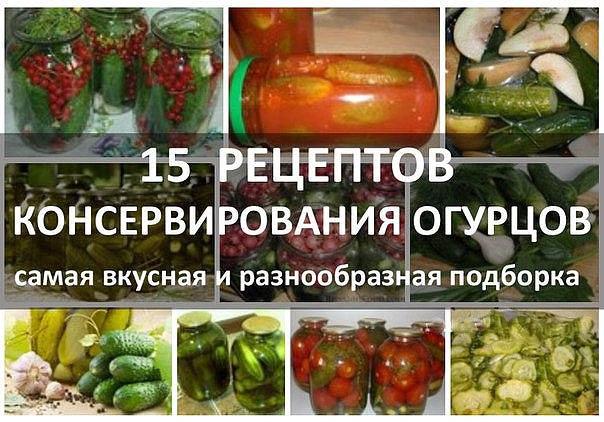 Рецепт вкусных консервирования огурцов