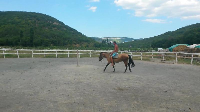 Обьезжаем лошадку или куда уходит детство