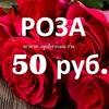Купить розы, цветы с доставкой в СПб 50 р.