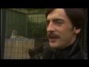Михаил Боярский - Дрессировщик 1983