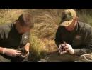 Дикая жизнь с Тимом Фолкнером The Wild Life of Tim Faulkner 2013 10