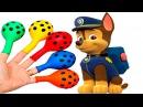 УЧИМ ЦВЕТА - ПЕСНИ ДЛЯ ДЕТЕЙ - Щенячий Патруль поможет УЧИТЬ ЦВЕТА видео для дете ...