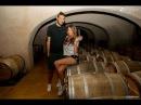 Русские в Европе 11. Старейшая Винодельня в Сен Тропе Domaine Bertaud Belieu