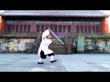 Wu Dang Dan Dao Fei Long 3 Sword