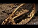 Сенсационные археологические раскопки. Удивительные находки возрастом 5,5 тыс.