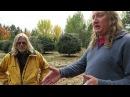 Grow Marijuana: Giant Cannabis Plants Outdoors in Oregon