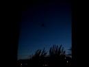 Человек-паук заокном насекомые паук вечерни... Погода в городах России 12.09.2017