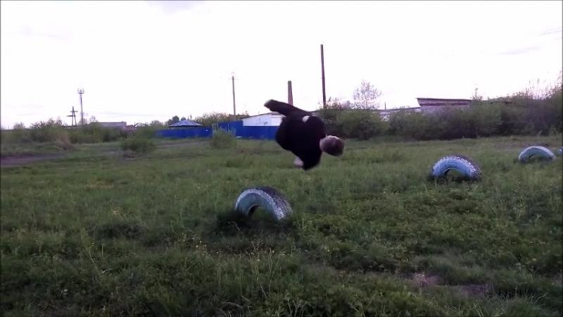 видео-поздравление Молодая Гвардия Единой России