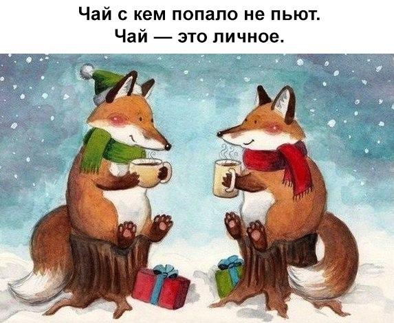 https://cs7057.vk.me/c837630/v837630349/10269/McmgqZ_N8LA.jpg