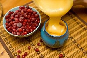 Полезные свойства и противопоказания клюквы с медом