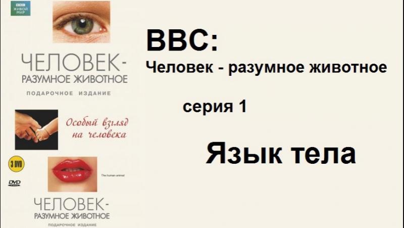 BBC Человек разумное животное Язык тела 1 серия
