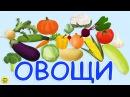Развивающий мультфильм про овощи для самых маленьких. Развивающий мультик для ...
