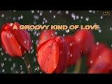 A GROOVY KIND OF LOVE KARAOKE WAYNE FONTANA
