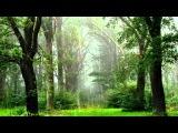 Спокойная, Расслабляющая Музыка, Шум Дождя, Звуки Природы. #Релакс - RELAX!