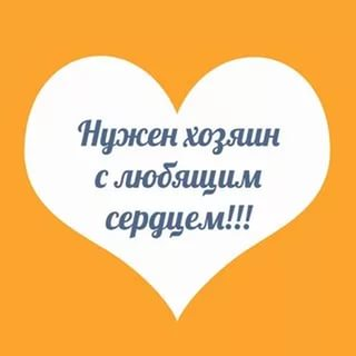❤ Зачастую, когда счастья не ожидаешь, оно приходит само. Ну или его п