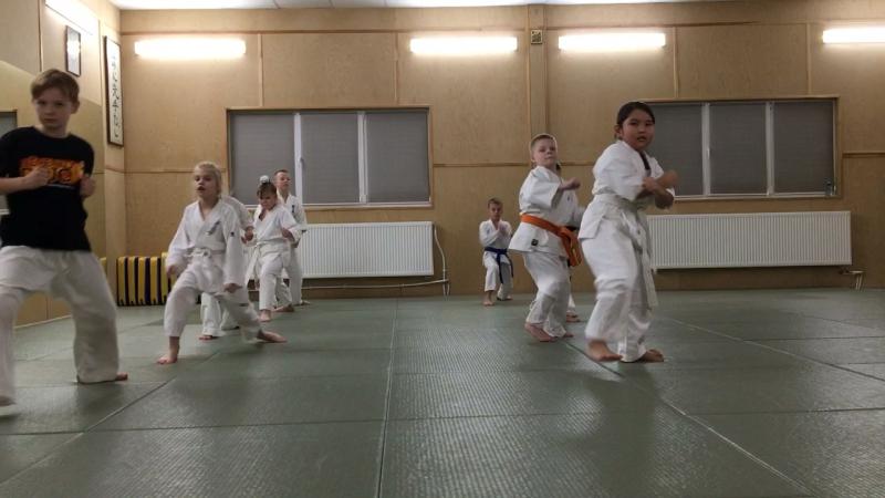 Сокуги Тайкоку Соно Сан! eremenkodojo @aleksandr.eremenko_ младшаягруппа средняягруппа семьяКиокушин kyokushin kyokushin