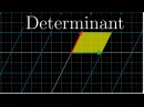 The determinant Essence of linear algebra chapter 6