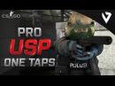 CS GO Pro USP ONE TAPS Fragmovie