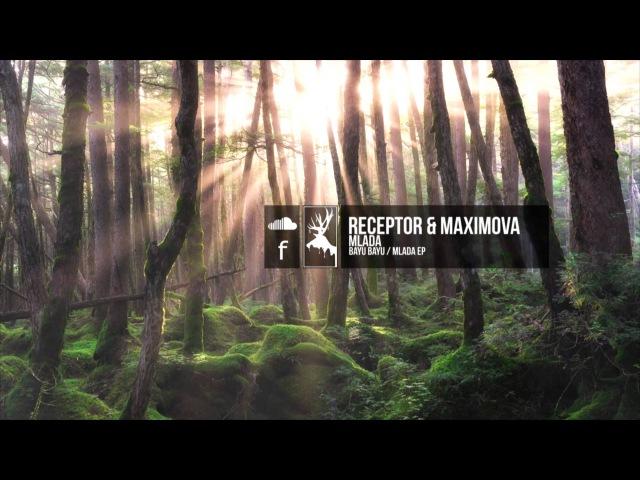 Receptor Maximova - Mlada