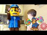 Джони Джони да папа BAD KID крадёт конфеты Щенячий патруль Johny Johny Yes papa Nursery Rhymes song