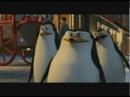 Пингвины из Мадагаскара / The Madagascar Penguins in a Christmas Caper 2005 трейлер ENG