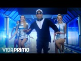 Ilegales - Tamo Happy Official Video