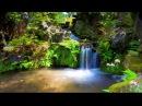 Райские сферы Целительная музыка для восстановления и укрепления нервной сист