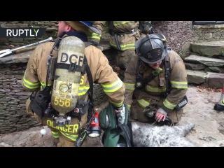 Искусственное дыхание для собаки: пожарные не пожалели сил для спасения пса