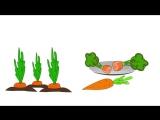 Мультфильм про овощи. Развивающие мультики для детей до 4-х лет.