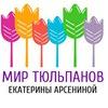 Mir Tyulpanov