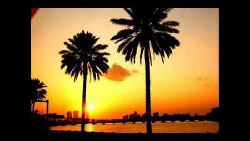 Jan Hammer - Crockett's Theme (HQ Audio)