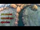 Река Павловка - подвесной мост - аэросъёмка