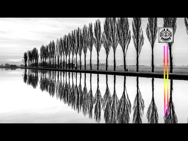Basic Pleasure Model - How To Live (Mercury Federation Mix) [ZDB Rec]