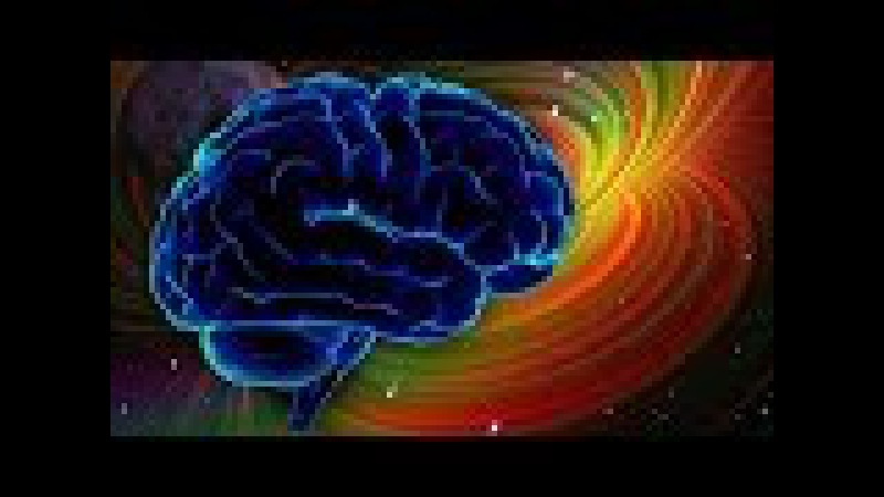 Установлена связь мозга с информационным полем Вселенной. Как работает мозг чел...