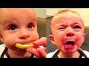 Видео для детей. ПРИКОЛЫ С ДЕТЬМИ 2017 Смешные дети Funny Kids Videos 1