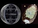 Мощнейший телескоп совершил фантастическое открытие в Солнечной системе  Планета Х   Нибиру