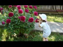 🌷Happy International Children's Day ❤️ Innocence Giovanni Marradi 🌷