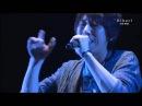 Hatano Wataru - Hikari (Live at Hamatora Fes. 2014 Summer)