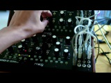 Self playing Moogs, Buchla style