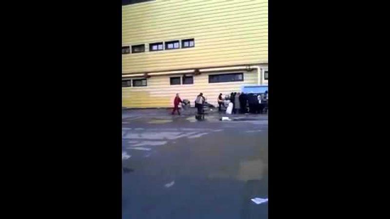 Кемерово - Россия - Люди достают еду с мусорки