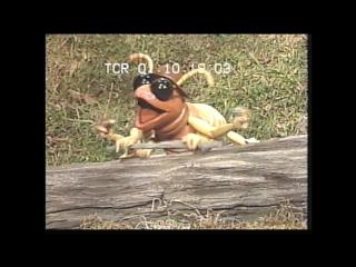 Muppet sing alongs - billy bunnys animal songs (1994, uk vhs)